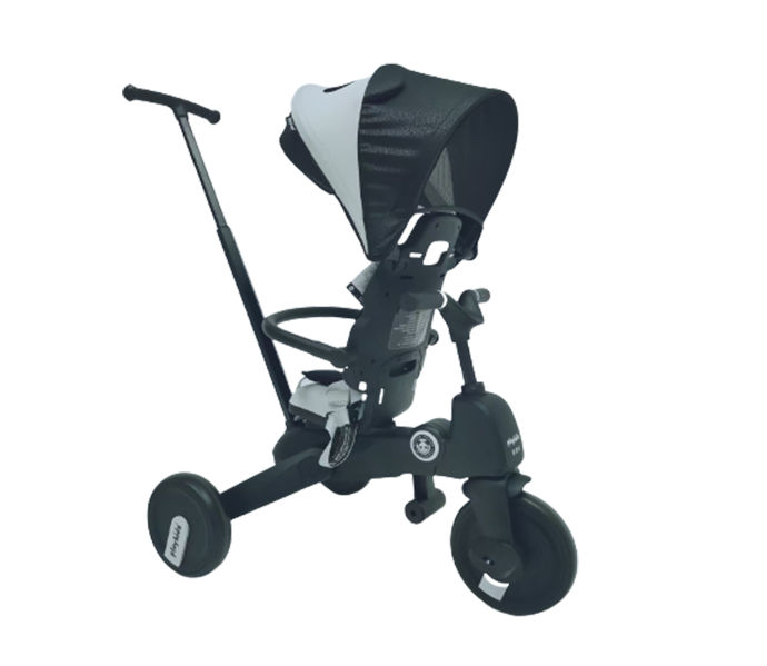Kids tricycle with reversing seat back and canopy